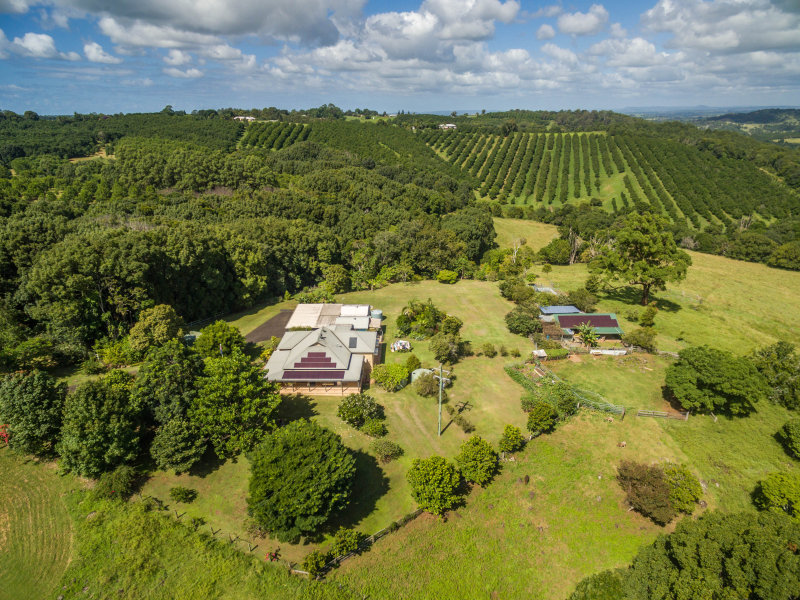 168 Muller Road, Tregeagle, NSW 2480
