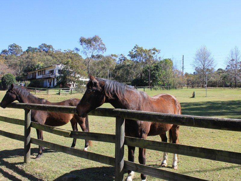 4 Kimbriki Road, Ingleside, NSW 2101