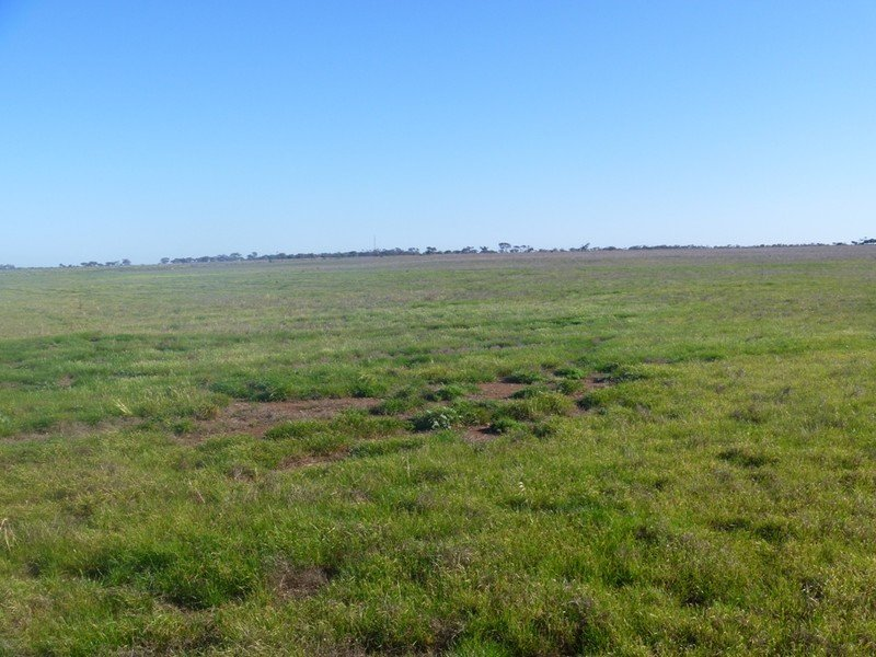 Lot 55 Frost Road, Lower Light, SA 5501