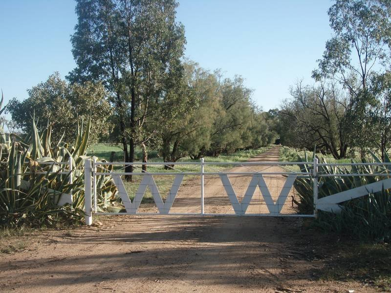 Quandialla Road, Bimbi, Young, NSW 2594