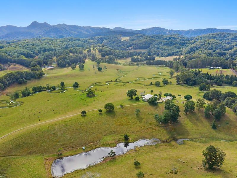 24 Bryens Road, Nobbys Creek, NSW 2484