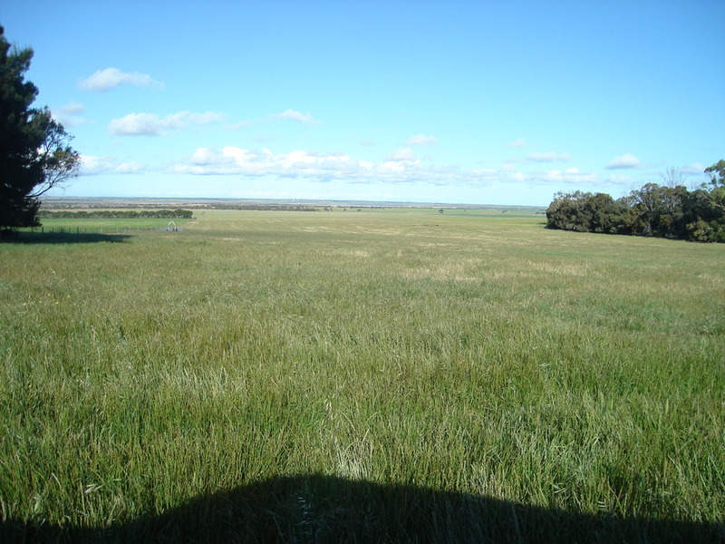 Lot 12 Yorketown  Road, Warooka, SA 5577