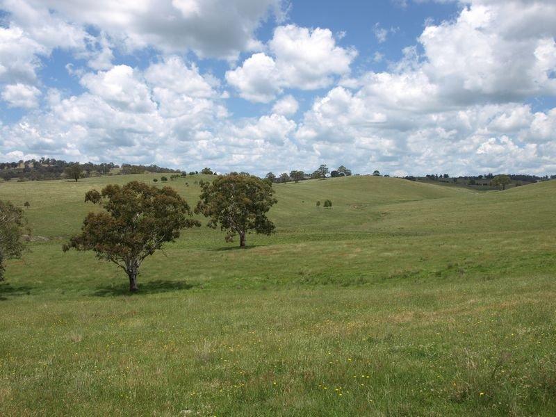 Brenkley, Walcha, NSW 2354