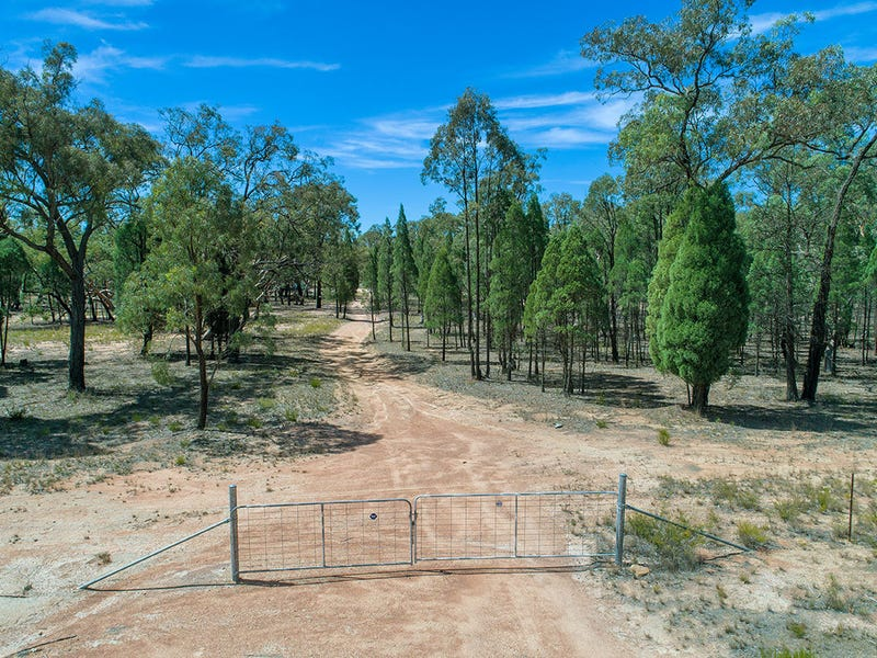 231 Springwood Park Road, Gulgong, NSW 2852