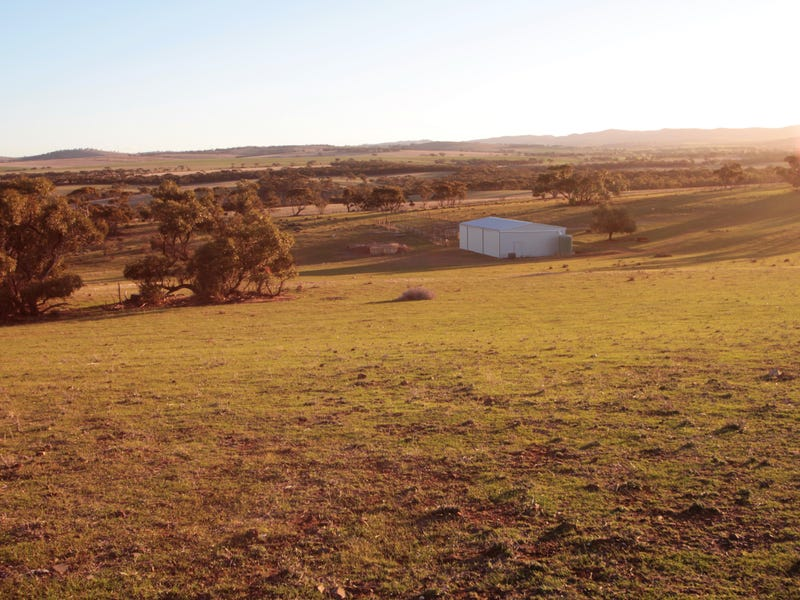 Lot 401 North Hills Road, Dutton East, SA 5356