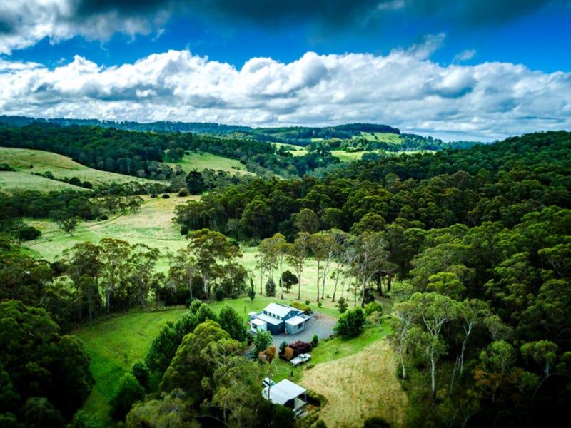 6410 Waterfall Way, Dorrigo, NSW 2453