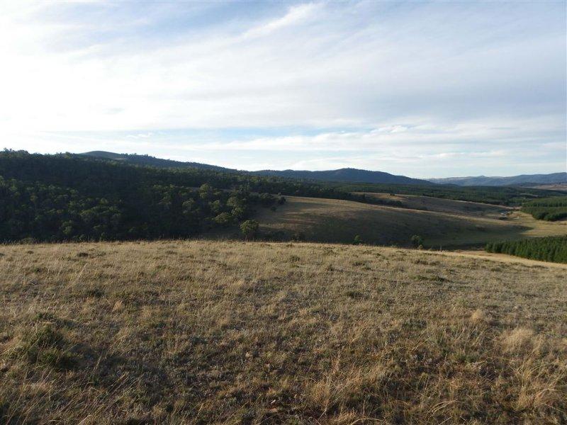 Corrowong Collins High Range, Delegate, NSW 2633