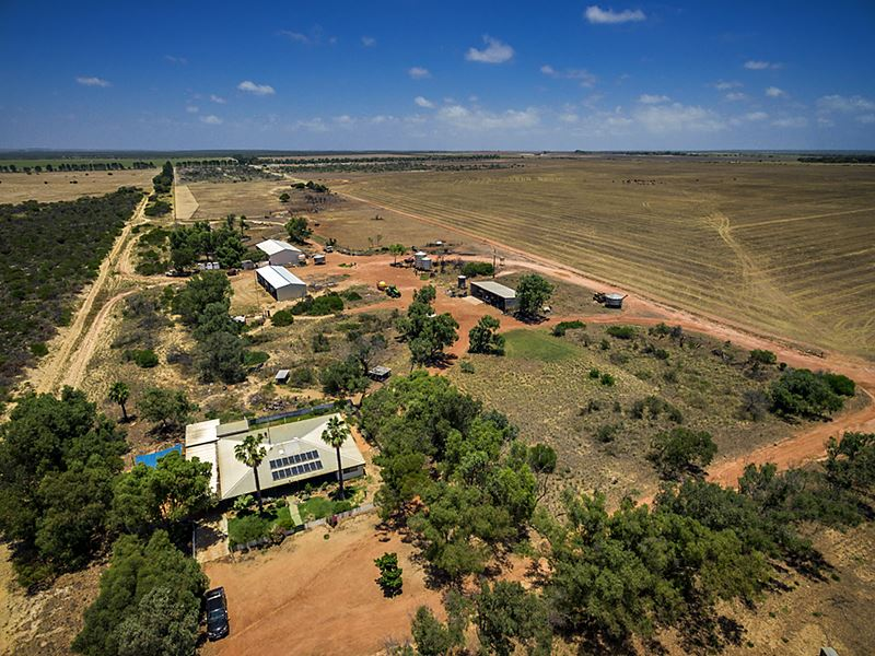 2848 Yerina Spring Road, West Binnu, WA 6532