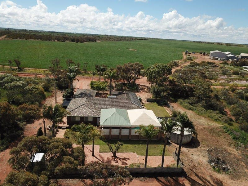"Carsim Farms ""Googoolili"" 8780 North West Coastal Highway, Binnu, WA 6532"