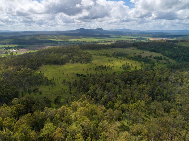 1354 Plains Station Road, Tabulam, NSW 2469