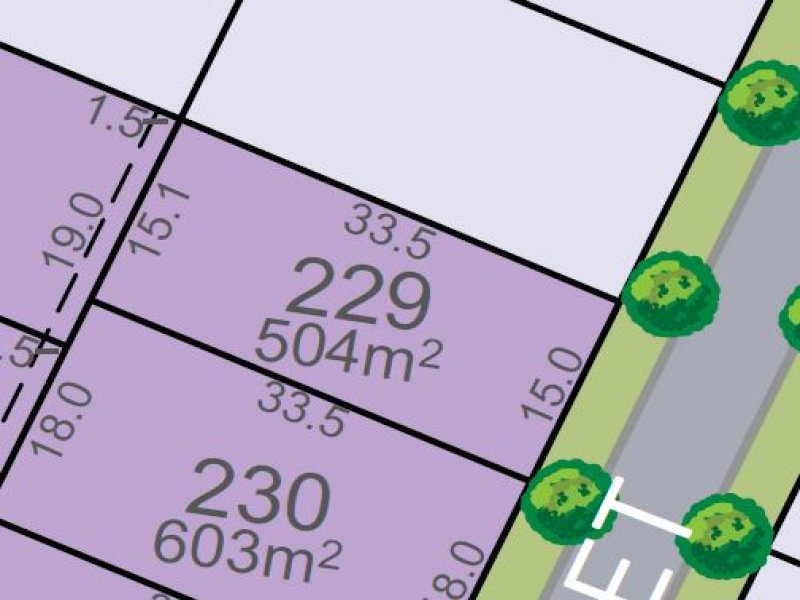 Lot 229, Vine Street, Chisholm, NSW 2322