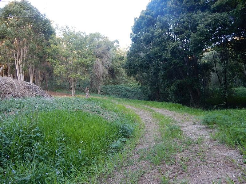 Address available on request, Kin Kin, Qld 4571