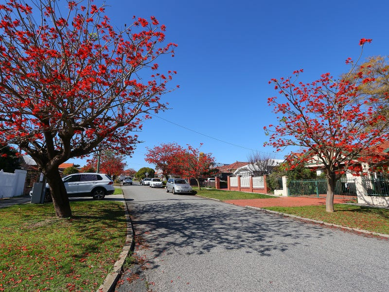 56 Mabel Street, North Perth, WA 6006
