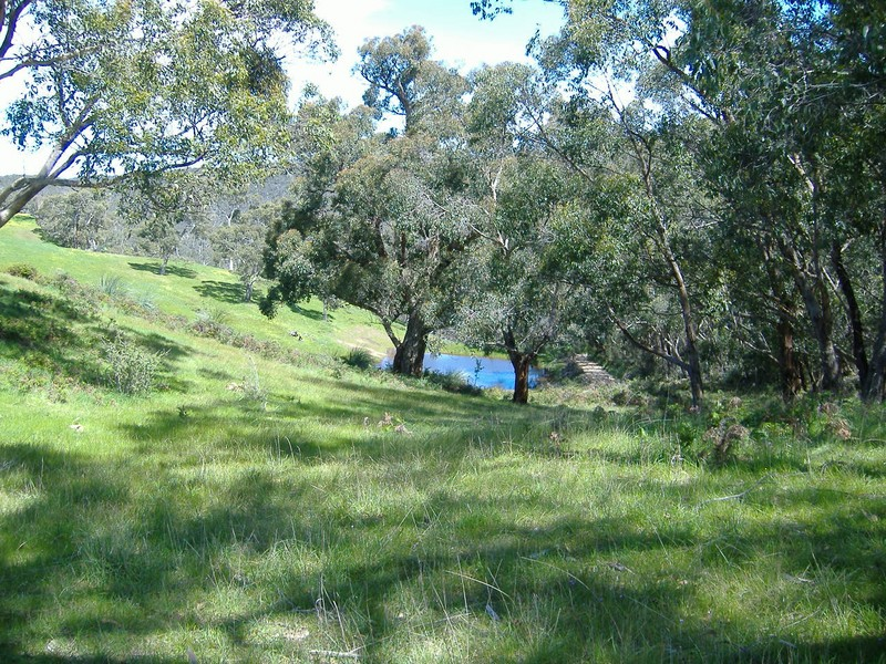 Lot 52 Ti Tree Road, McHarg Creek, SA 5157