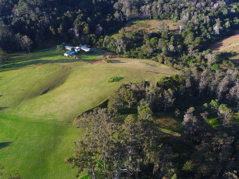 100 Schultz Road, Billys Creek, Dorrigo, NSW 2453