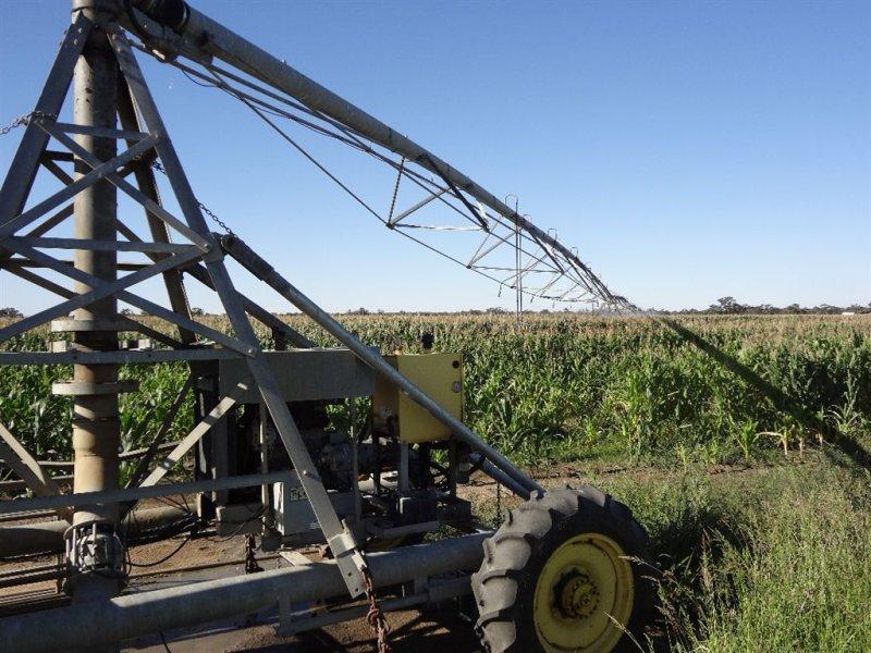 . Warbreccan Farm, Deniliquin, NSW 2710