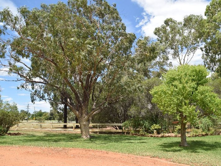 'Rosebank' 13 East Coonamble Road, Gilgandra, NSW 2827