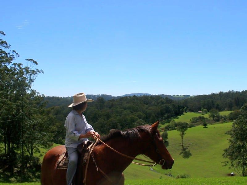 245 Deer Vale Road, Dorrigo, NSW 2453