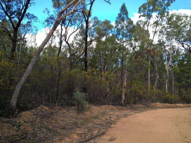 Lot 3 Melrose Estate, Warialda, NSW 2402