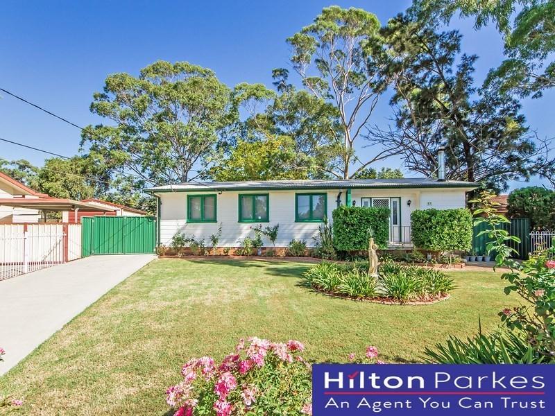 22 Niland Crescent, Blackett, NSW 2770