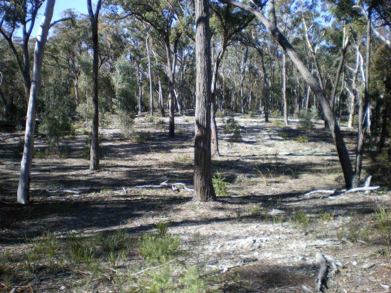 352 Jerralong Road OALLEN, Goulburn, NSW 2580