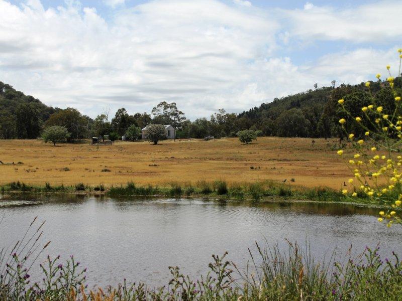 1640 Goolma Road, Gulgong, NSW 2852