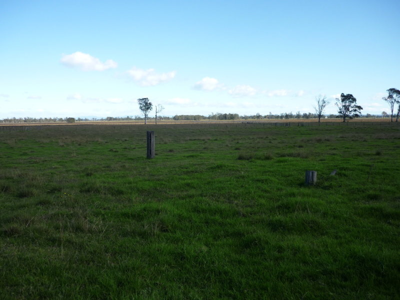 Lot 1 Lower Coldstream Road, Tucabia, NSW 2462