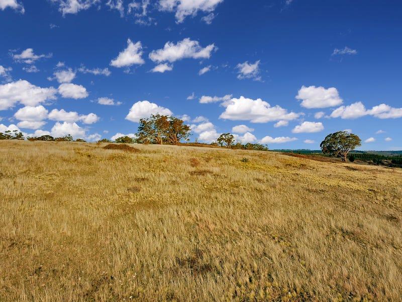 1325 Swallows Nest Road, Dog Rocks, NSW 2795