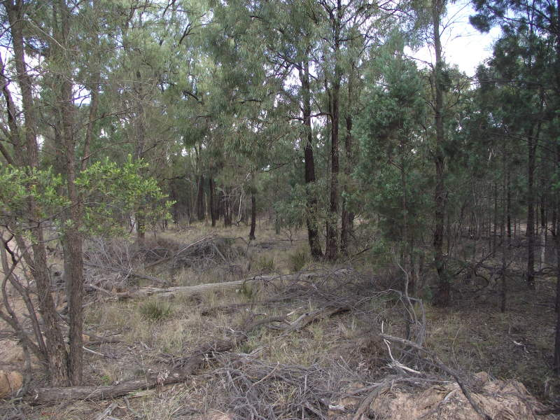 Lot 3 Ayton  Rd, Miles, Qld 4415