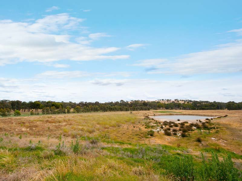 Lot 4, 280 Maldon-Shelbourne Road, Maldon, Vic 3463