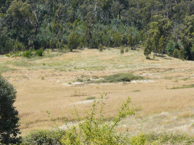 00 Scrubby Creek Track, Omeo, Vic 3898