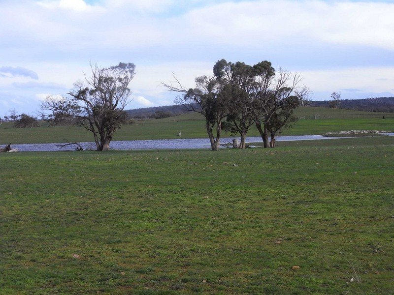 P168 Lake Leake Highway, Swansea, Tas 7190
