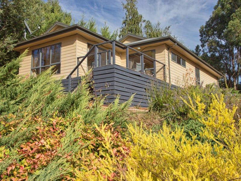 2/4 Alpine Ridge Drive, Merrijig, Vic 3723