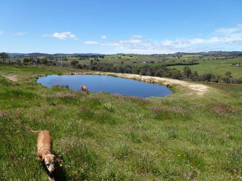 696 Galls Gap Road Strathbogie, Euroa, Vic 3666