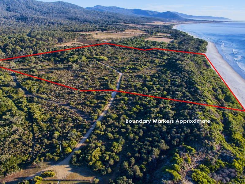 Lot 100/18482 Tasman Highway, Douglas River, Tas 7215
