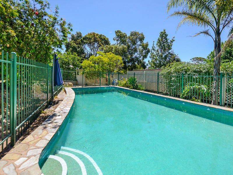 6 Launceston Avenue, Banksia Park, SA 5091