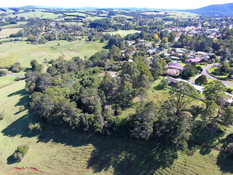 23 Hollibone St, Dorrigo, NSW 2453