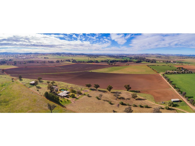 166 Settlement Bridge Road, Canowindra, NSW 2804