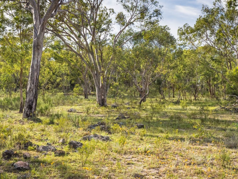 Lot W Cudgegong Road West, Rylstone, NSW 2849