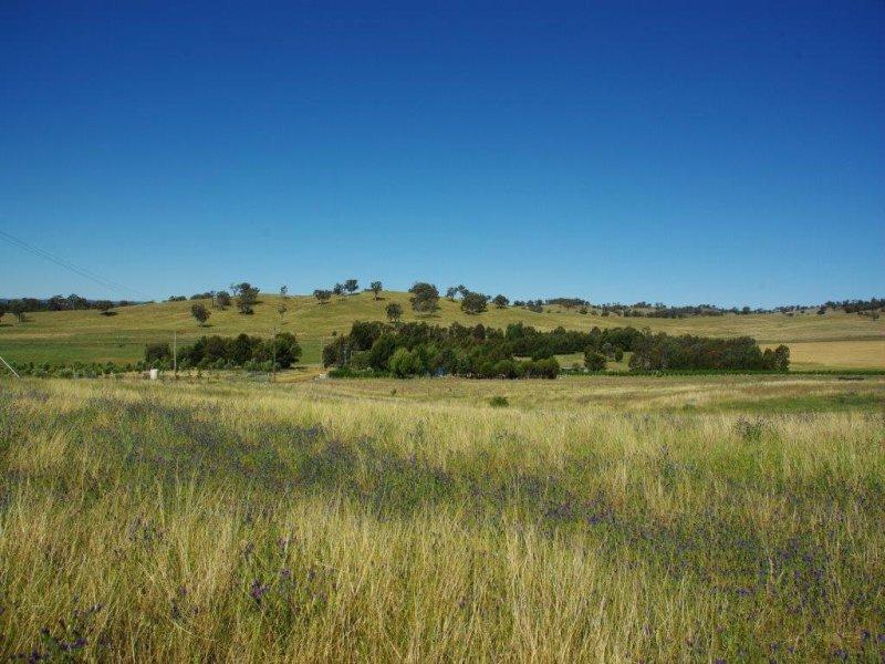129 Tarrawingee Road, Mumbil, NSW 2820