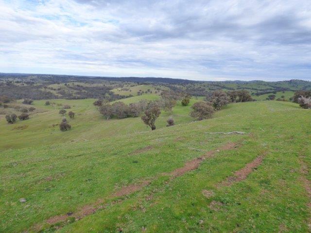 Lot 2, 2100 Taylors flat road, Taylors Flat, NSW 2586