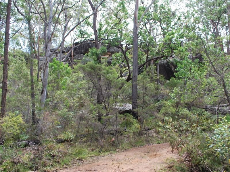 410 McGills Road, Kremnos, NSW 2460