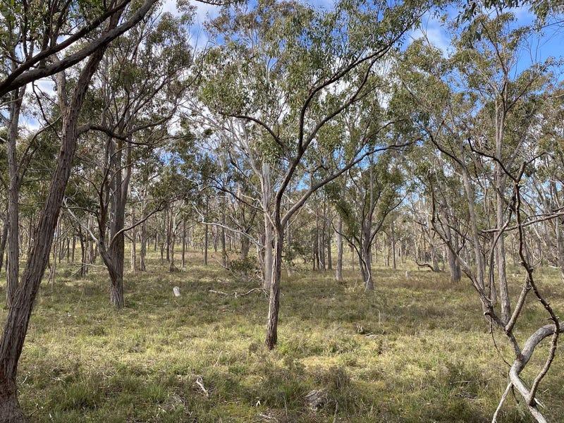 202 Long Gully Road, Bannaby, NSW 2580
