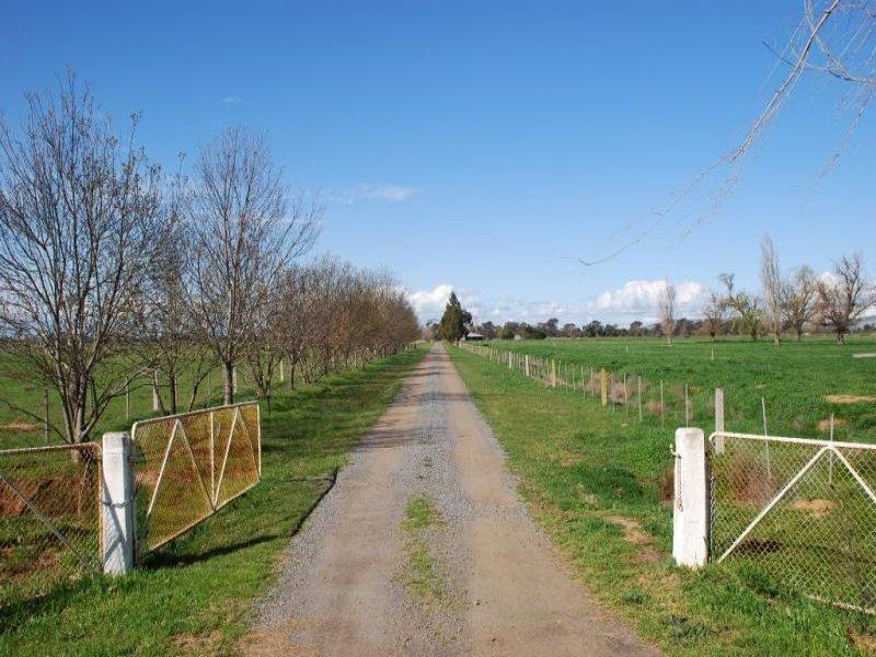 1010 Sidebottoms Road, Pine Lodge, Vic 3631