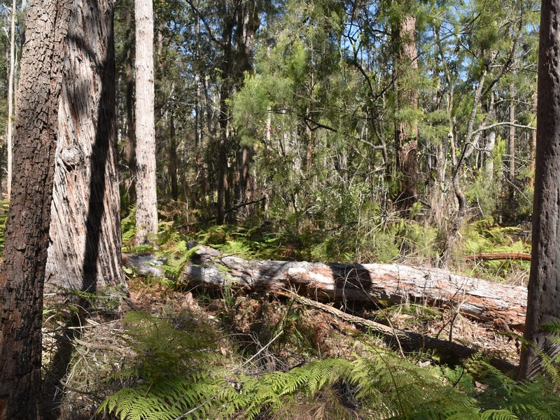 140  Sawpit Road, Boolambayte, NSW 2423