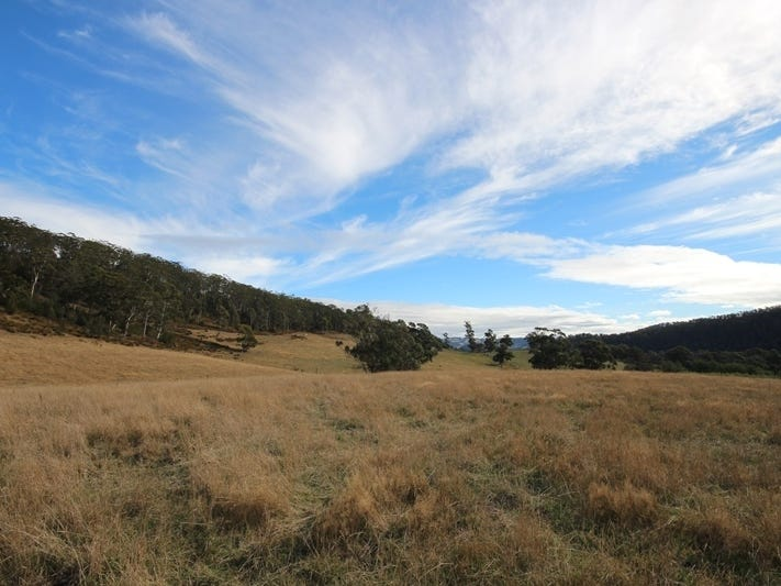 49 Acres off Abbots Road, Nicholls Rivulet, Tas 7112