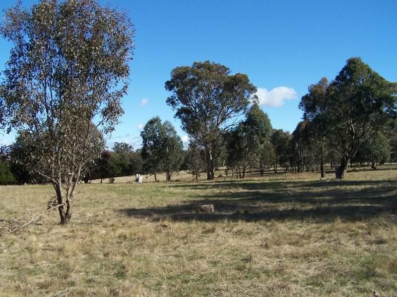 1992 Range Road, Mummel, NSW 2580