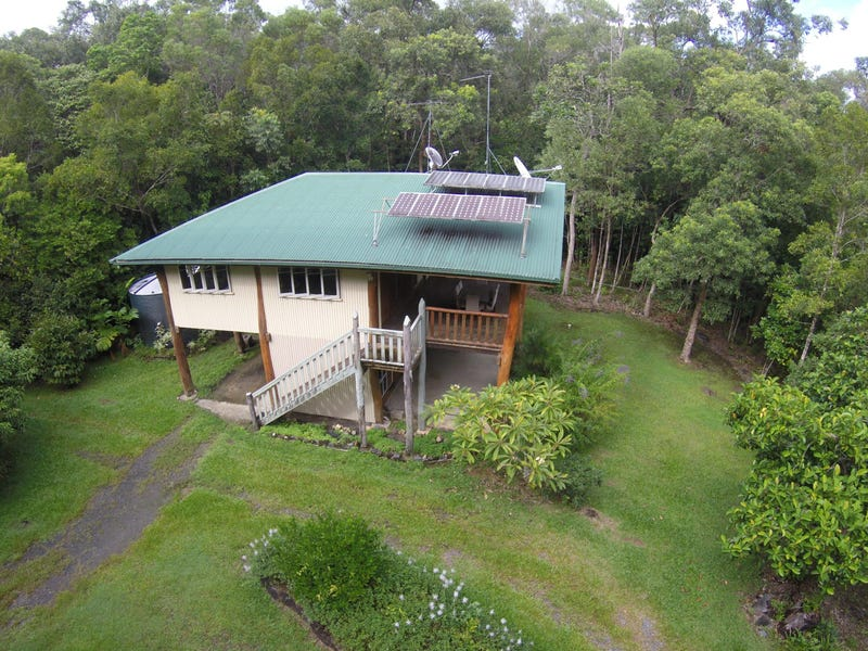 21 White Beech Road, Daintree, Qld 4873
