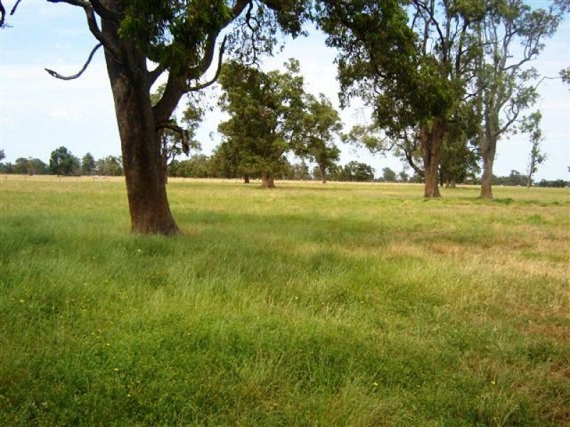 LOT 335 GAVIN ROAD, Elgin, WA 6237