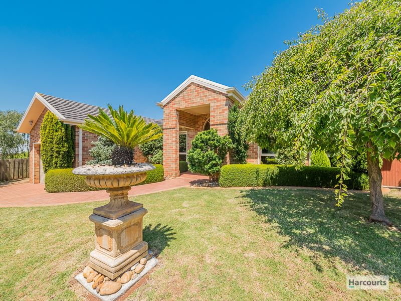 12 Wallace Crescent, Drouin, Vic 3818